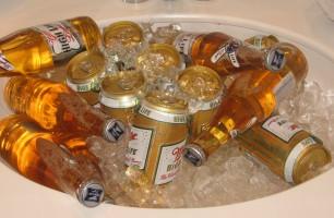 Travel Advice   Sinking Ice Bucket